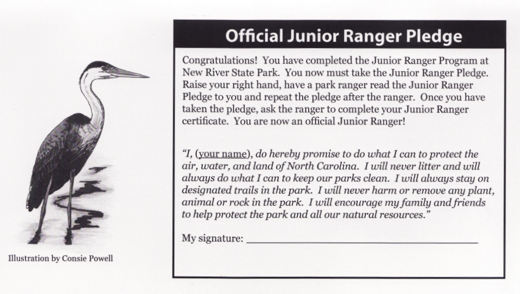 Jr Ranger Pledge